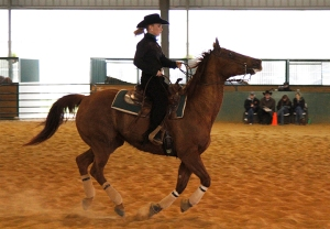 Baylor Equestrian vs Oklahoma State